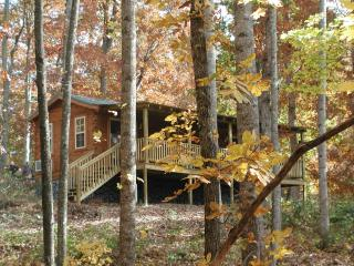 Mountain Cabin in Apple Country Hendersonville, NC