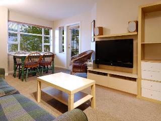 Village North Whistler Best Value Condo - Whistler vacation rentals