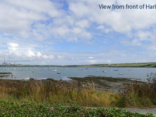 Pet Friendly Holiday Cottage - Harbour View, Angle