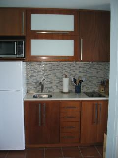 New kitchenette  with 2 burner glass cooktop
