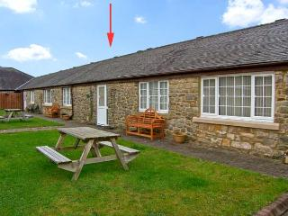 PLOVER, family friendly, country holiday cottage, with a garden in Haydon Bridge, Ref 11914