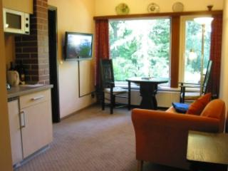 Vacation Apartment in Worpswede - 323 sqft, central, quiet (# 2331)