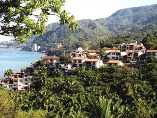 Relax in your jacuzzi on beautiful Banderas Bay, Puerto Vallarta