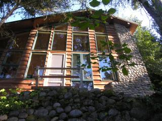Cabin on Lake St Clair w/private dock near JBLM - Tacoma vacation rentals