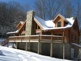 Beautiful upscale log cabin sleeps 8, Beech Mountain