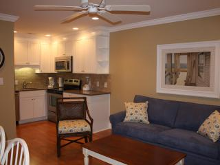 315 Breakers Oceanfront Condo Remodeled 2012, Hilton Head