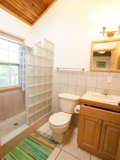 Guest bedroom ensuite, with glass block shower, toilet and vanity