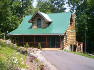 Bird Nest - Boone vacation rentals