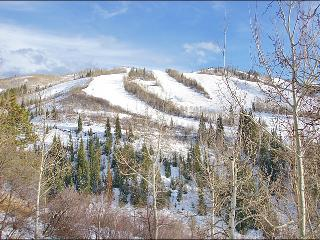 Ski In Ski Out, Remodeled 2008 - Great Slope View, Easy Access (5295), Steamboat Springs