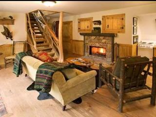 Clinch River Cabin - Lake City vacation rentals
