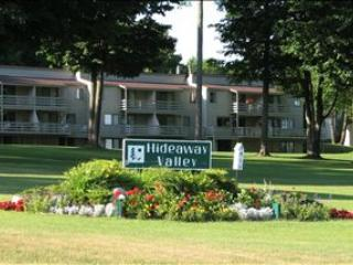 Hideaway Valley 57 52516 - Harbor Springs vacation rentals