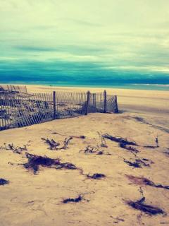 Our beach after Sandy
