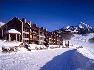 Cozy Condo at a Great Price - Fantastic Evening Views of Town Lights (1013), Crested Butte