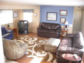 new living room furniture installed April 2013