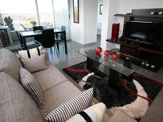 Modern two bedroom condo in Palermo Hollywood- hum, Buenos Aires