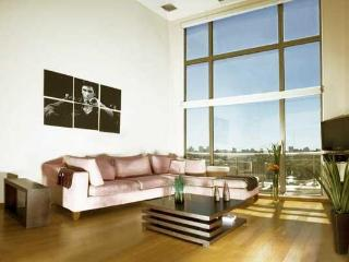 Luxury two-bedroom penthouse P.Hollywood-hum0, Buenos Aires