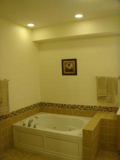 Downstairs master bathroom with Jacuzzi