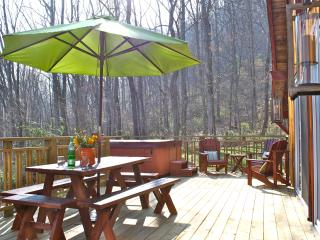 Hip Little Cabin on the Hill - Fantastic Location, Swannanoa