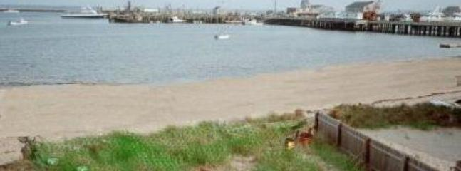View from Deck of Provincetown Pier - Center of Town 1 Bedroom Beachfront Condo - Provincetown - rentals