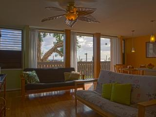 Tropical Design, Oceanview, Affordable Price!, Waianae