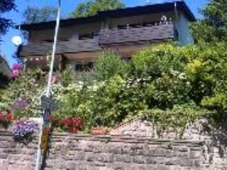 Vacation Apartment in Baden Baden - spacious, warm (# 2564) - Baden-Baden vacation rentals