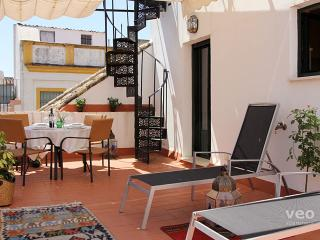 Cuna Terrace | Split-level apartment large terrace, Seville