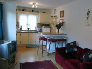 Montbretia - beside Connemara National Park - Connemara vacation rentals