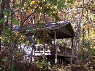 Cabin in Willoughby Woods   2 & 1 bedroom cabins - Brevard vacation rentals