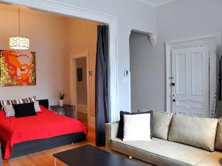 BEST Location: BIG & CHIC apartments (berri metro), Montreal