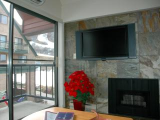2BR/2BA SKI-IN/OUT SLOPESIDE VIEW - 3RD NT HALF!, Park City
