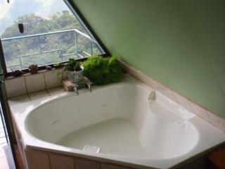Enjoy this romantic bathtub for two overlooking the mountains