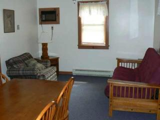 Ash 1-4 Cottage - Lake George vacation rentals