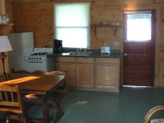 Hermitage - Lake George vacation rentals