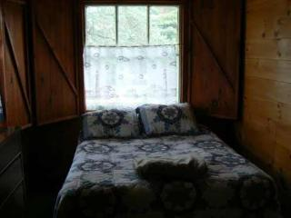 Tamarack - Lake George vacation rentals