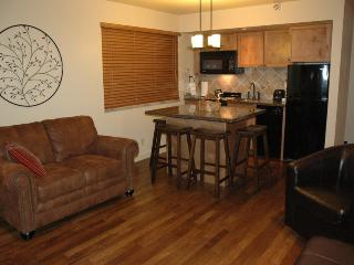 1BR/2BA SKI-IN/OUT SLOPESIDE VIEW - 3RD NT HALF!, Park City