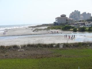 Best View On The Beach- Amazing Pet-Friendly Myrtle Beach Rental with WiFi