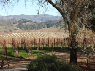 Starlite Vineyards House - Sonoma County vacation rentals