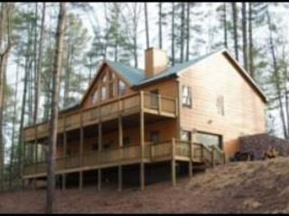 A 'Picture Perfect' Cabin, Coosawattee Resort, Ellijay
