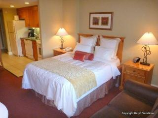 Marriott - South Lake Tahoe, Gondola, Pool, Jacuz - Waikiki vacation rentals