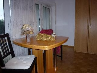 Vacation Apartment in Freiburg im Breisgau - 323 sqft, modern, comfortable, warm (# 2700), Friburgo
