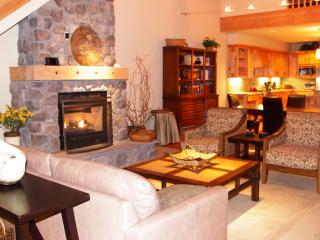 AC Pet Friendly Penthouse-Ski free, VIP Deals, Government Camp