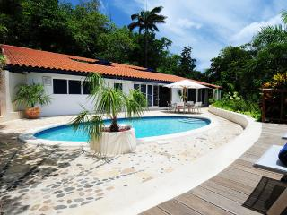 Sanwood Villa, Port Antonio