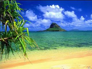Your own Beachfront Bungalow only $240 per night, Kaneohe