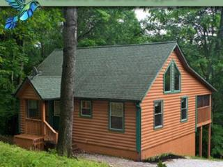 Hummingbird Cabin 2, Sugar Grove
