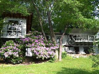 Captivating & Cozy 3 Bedroom Lakefront Cottage w/ Private Dock!, McHenry