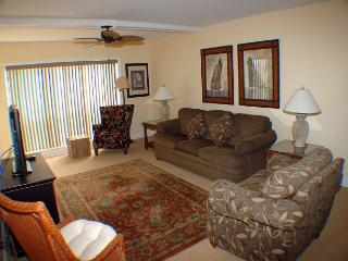 Shorewood 305 - Oceanfront 3rd Floor Condo - Hilton Head vacation rentals