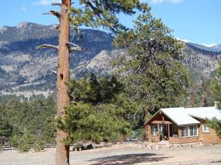 Cute As A Button - Estes Park vacation rentals