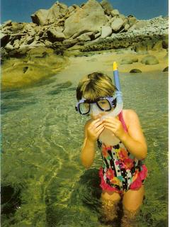 Safe Snorkeling & Swimming with free gear provided