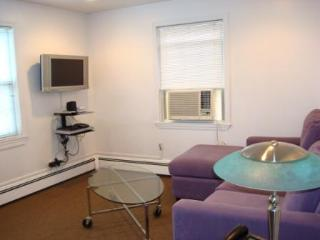 Furnished apartment in Boston and Cambridge area.