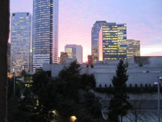 The Nest in the Heart of the City, Seattle